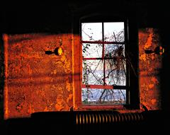 Isolation Ward, Recreation Room, Window Study, Island 3 Ellis Island