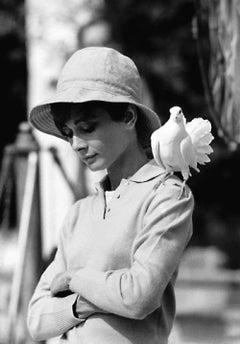Audrey Hepburn with Dove, St. Tropez