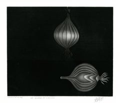 Les Oignons de Siracuse