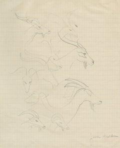 Page de Croquis: Tetes de Antilops