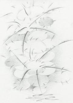 Untitled (cacti)