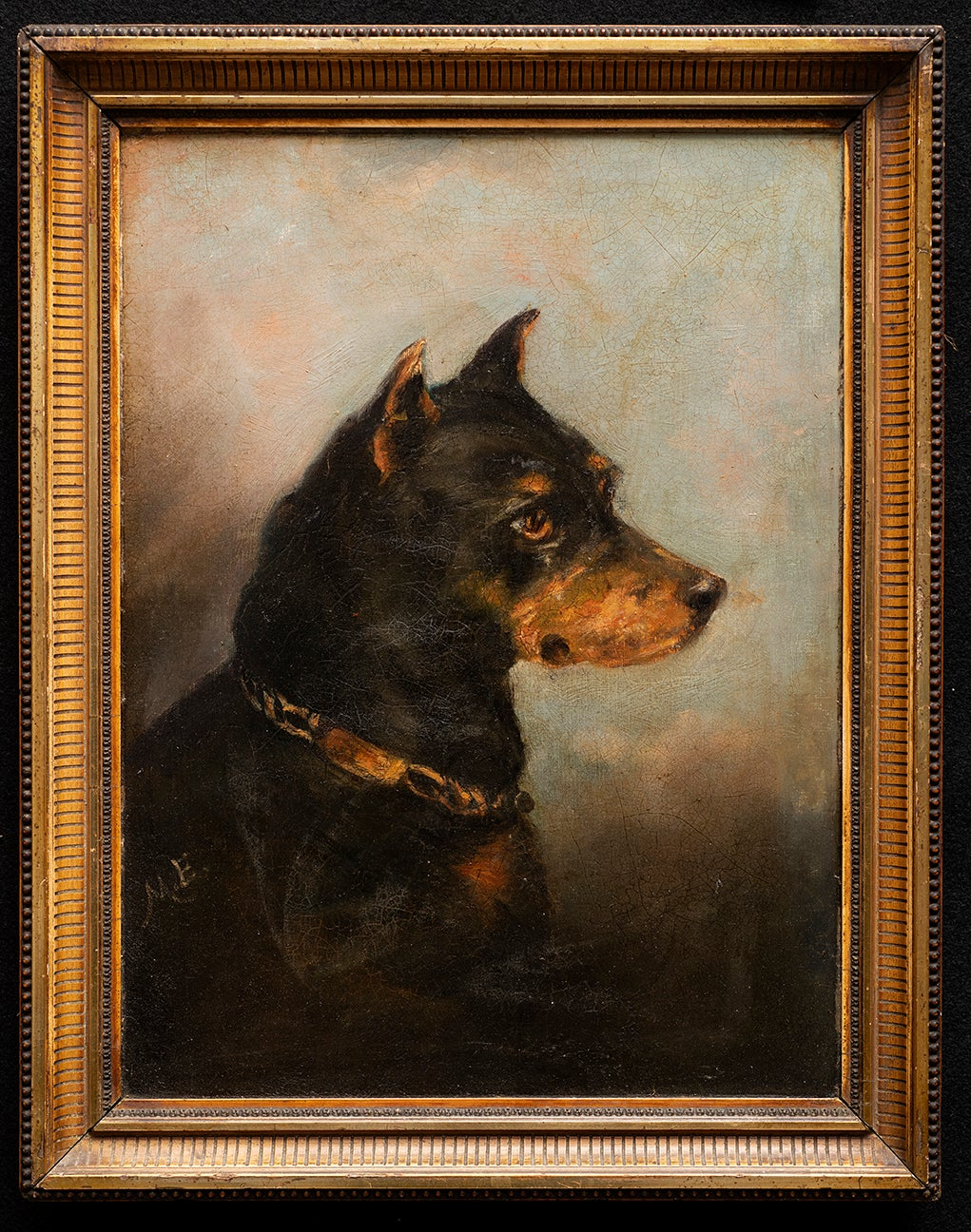 Dog Portrait of a Manchester Terrier
