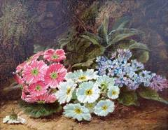 """""""Still Life with Daisies"""""""