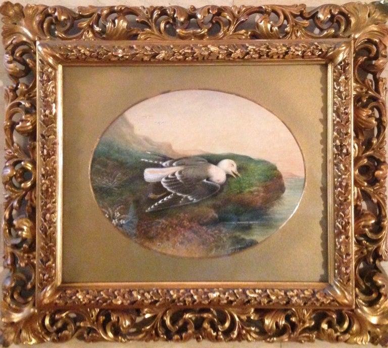 """John Duncan Landscape Painting - """"Dead Gull"""""""