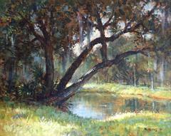 """Emerson Point Pond, Florida"""