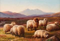 """Sheep in a Highland Valley"""