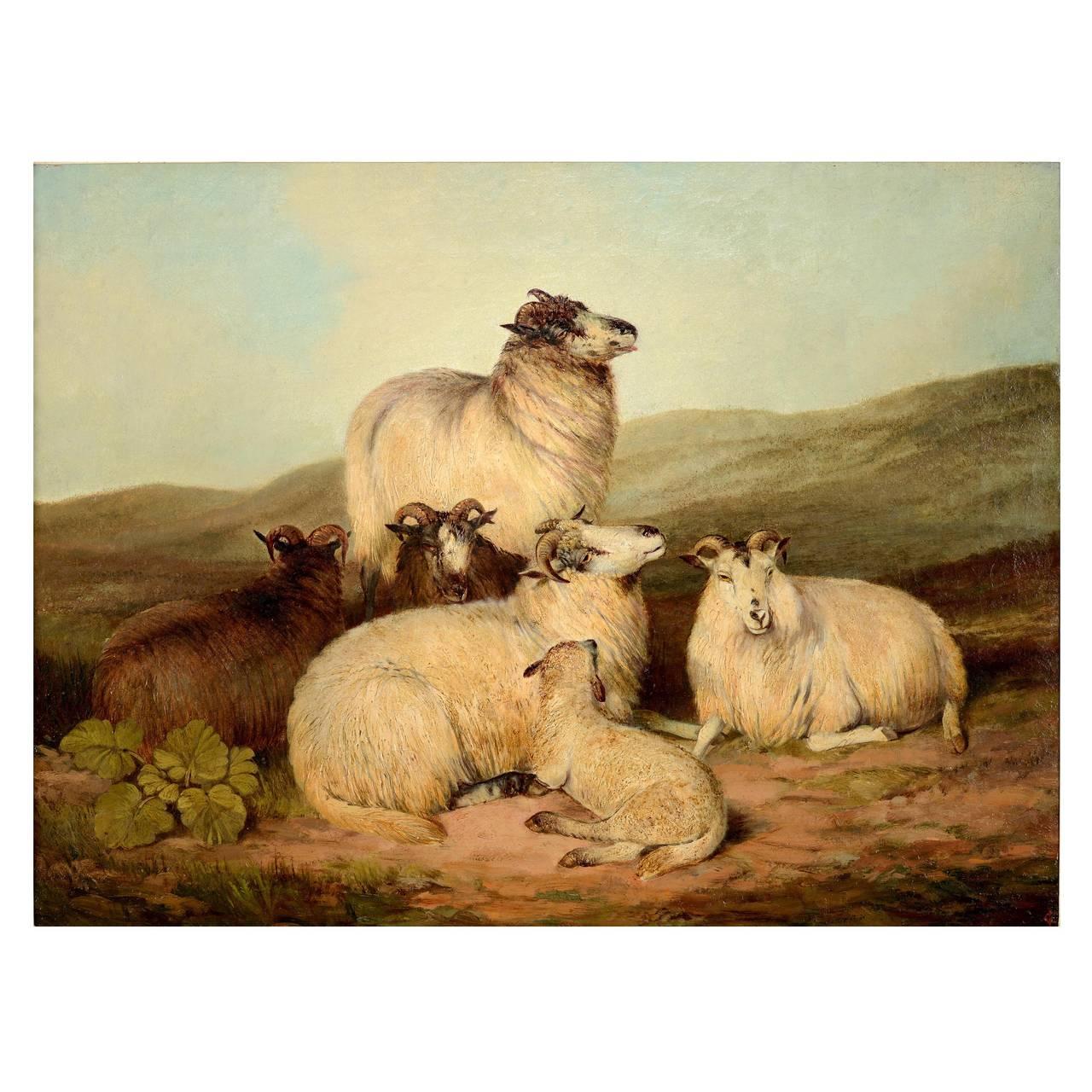 """Sheep on a Hillside"""