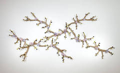 Branching Antlers with Flowers