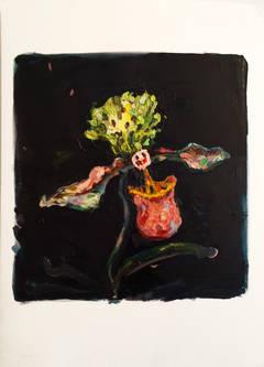 Mimicry Orchidea