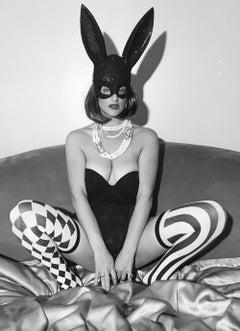 Funny Honey Bunny