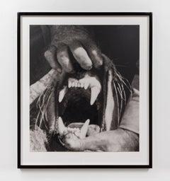 Hands & Feet: Hands, Tiger & Teeth