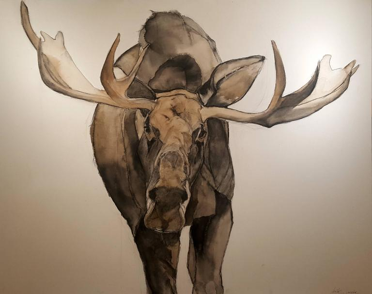 an analysis of the creation of mood in the bull moose Mossy oak outdoor sports and entertainment (moose media) is a multi-tool media solutions company that leads a variety of exclusive marketing activities for the pursuit channel.