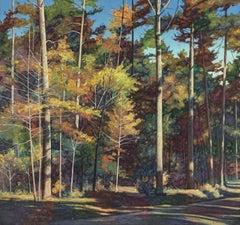 Woods at Chickamauga