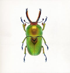 'Green Beetle #3' - insect illustration - hyperrealism - Chuck Close