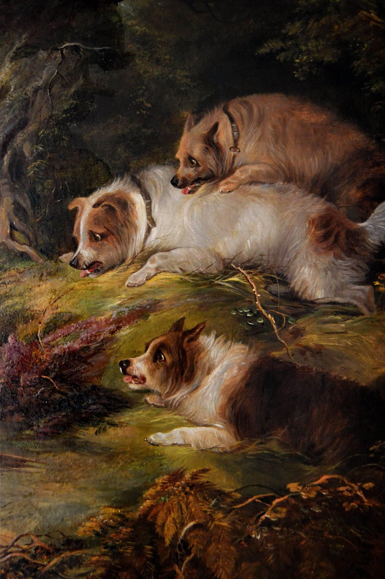 19th Century sporting oil painting of terriers & fox  - Victorian Painting by Edward Armfield