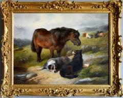 Pony & Dogs by a Stream