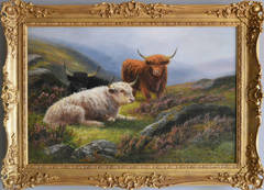Highland Cattle, oil on canvas