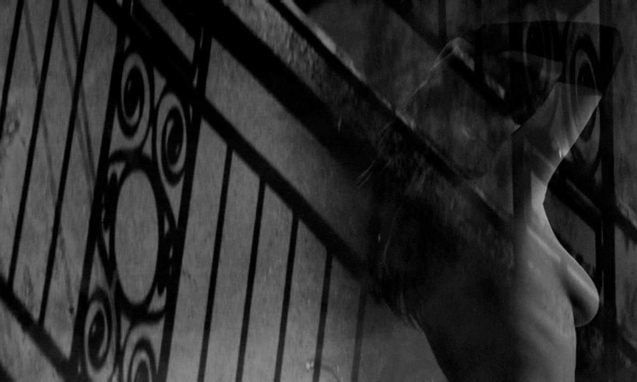 Preston Buchtel Black and White Photograph - In a Certain Light