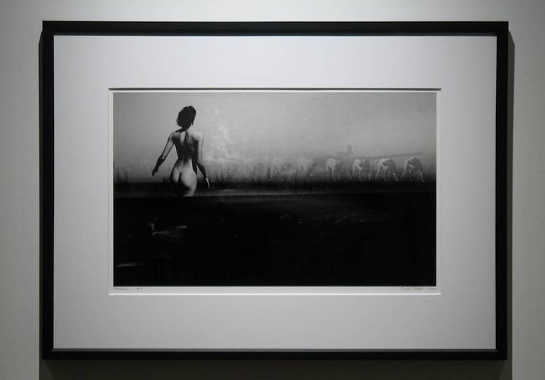 Resistance - Photograph by Preston Buchtel