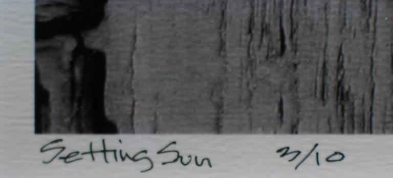 Setting Sun - Contemporary Photograph by Preston Buchtel