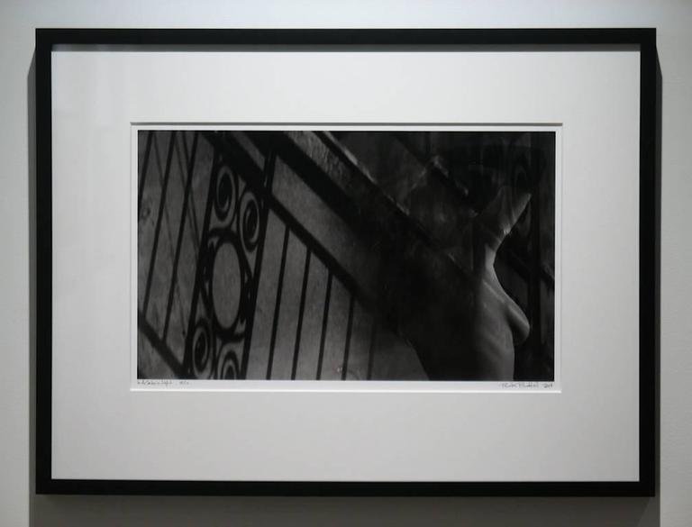 In a Certain Light - Photograph by Preston Buchtel