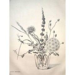 Rare Engraving - Kiyoshi Hasegawa - Autumn Flowers