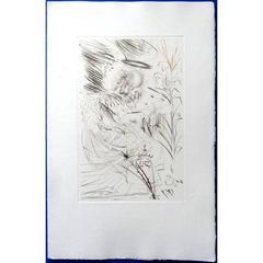 Salvador Dali - The Angel - Original Etching