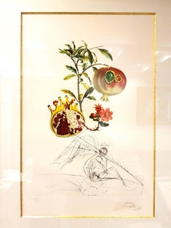 Salvador Dali - Angel and Pomegranate - Original Hand-Signed Lithograph