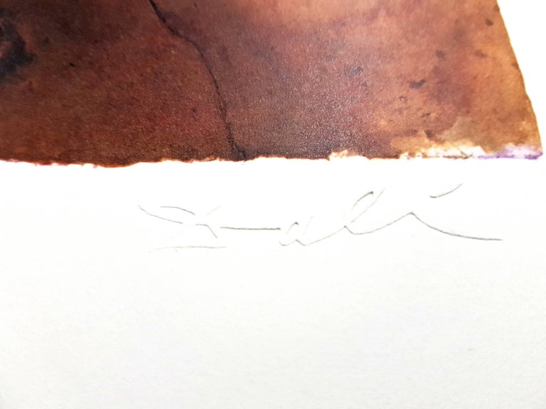 Auvergne - Lithograph For Sale 2