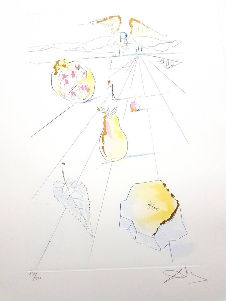 Salvador Dali - The Fruits of the Valley - Signed Aquatint