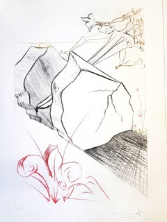 Salvador Dali - The Marvellous Steps - Original Handsigned Etching