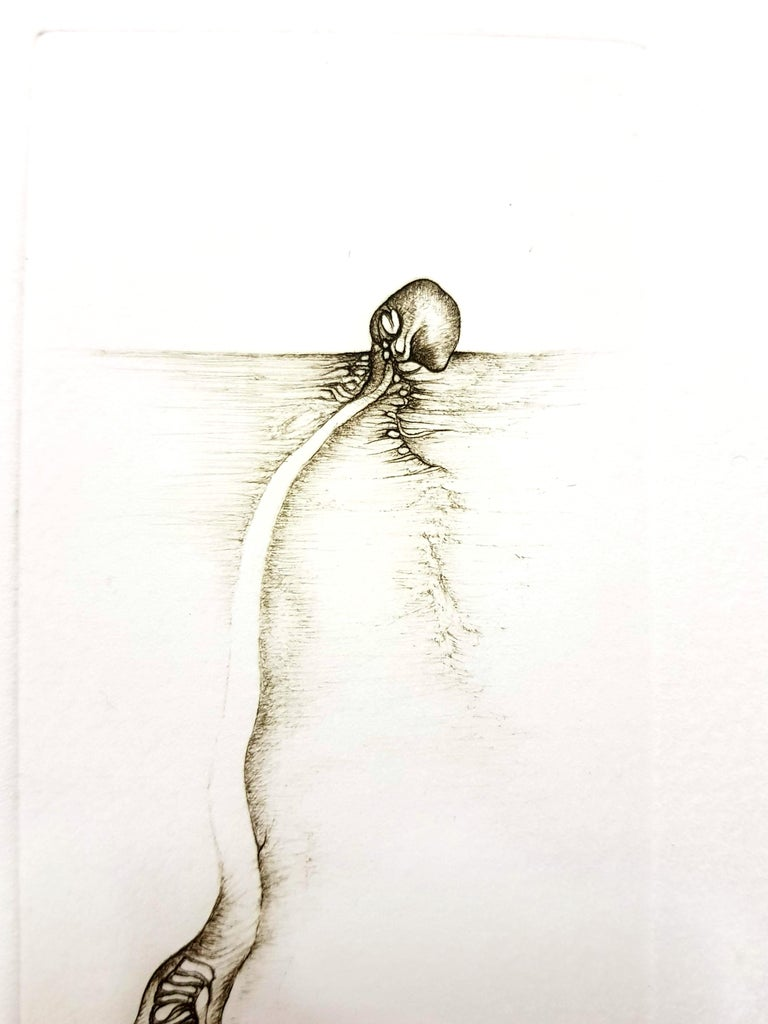Fred Deux - Grey Surrealism III - Signed Original Etching For Sale 1