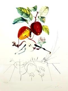 Salvador Dali - Apple Dragon - Original Hand-Signed Lithograph