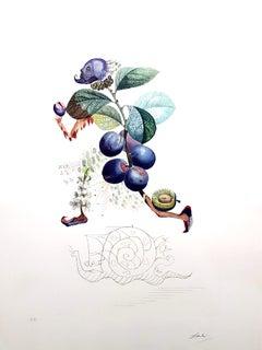 Salvador Dali - Plum - Original Hand-Signed Lithograph