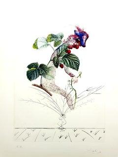 Salvador Dali -  Raspberry - Original Hand-Signed Lithograph