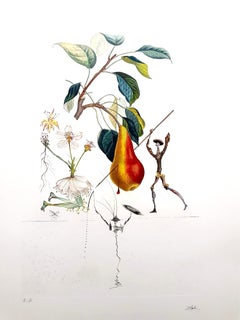 Salvador Dali - Don Quixote Pear - Original Hand-Signed Lithograph