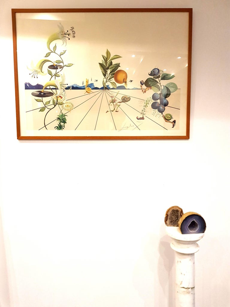 Salvador Dali - Flordali I - Lithograph For Sale 1