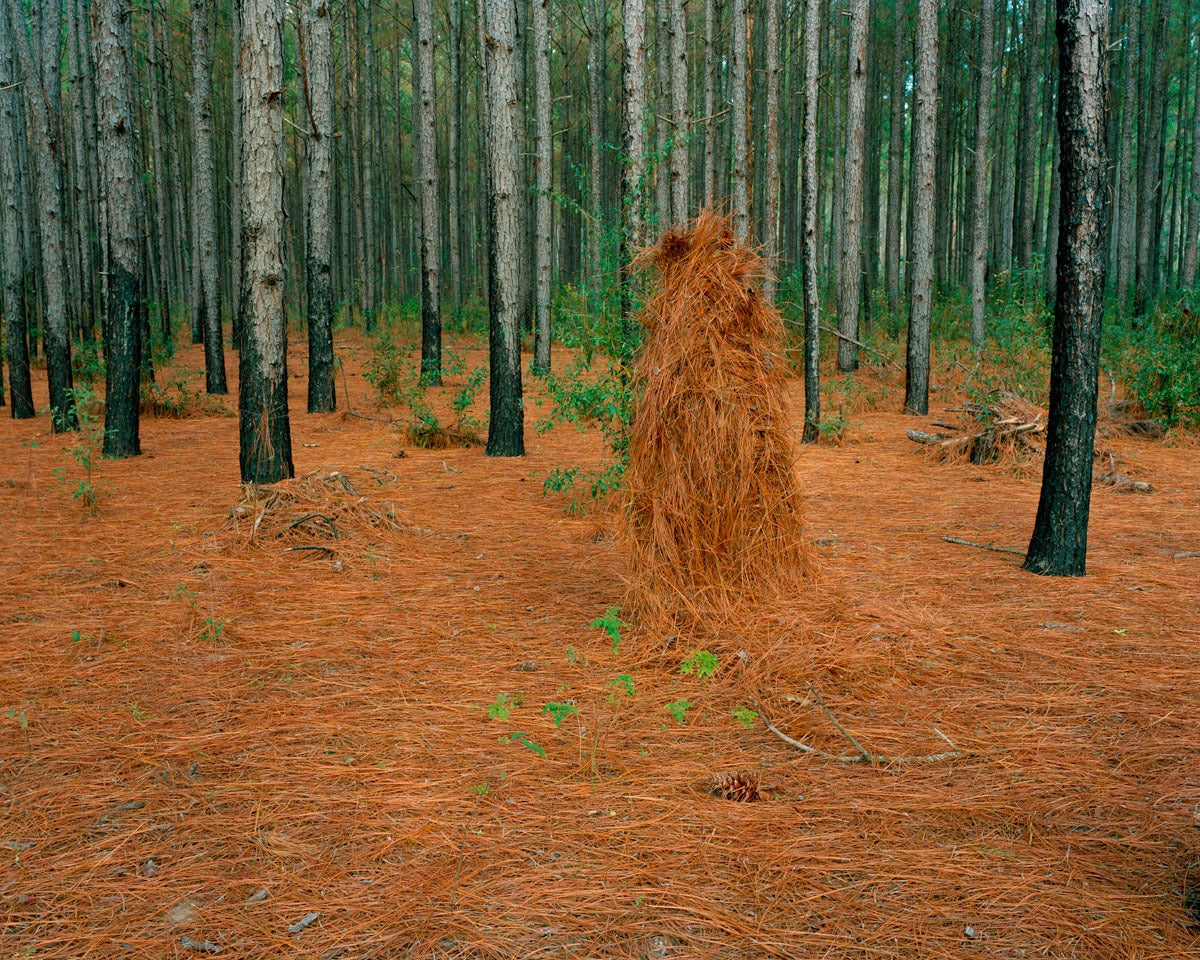 Ghillie Suit (Pine Straw)