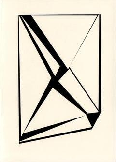 black and white, Unique photogram (17)