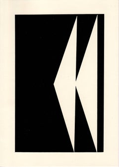 Unique Photogram, black (21)