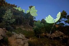 AB DB0, Color Landscape
