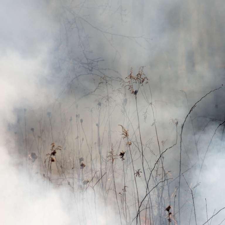 Jane Fulton Alt Landscape Photograph - Burn No. 18