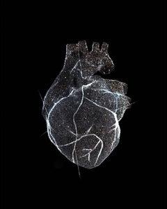 Glass Model of a Heart, love