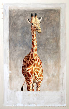 """#457"" Portrait of Giraffe with Neutral Gray Background and Exposed Canvas"