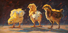 Chicks in the Evening
