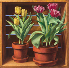 Two Pots of Tulips