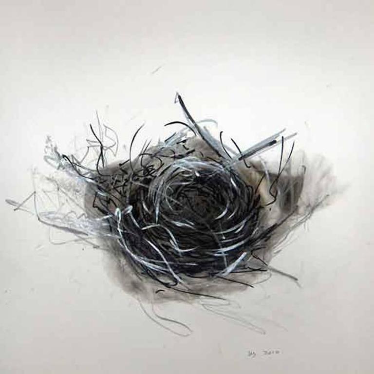 Wayne Zebzda - Nest 1 1