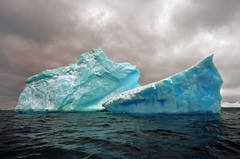 Antarctica #98