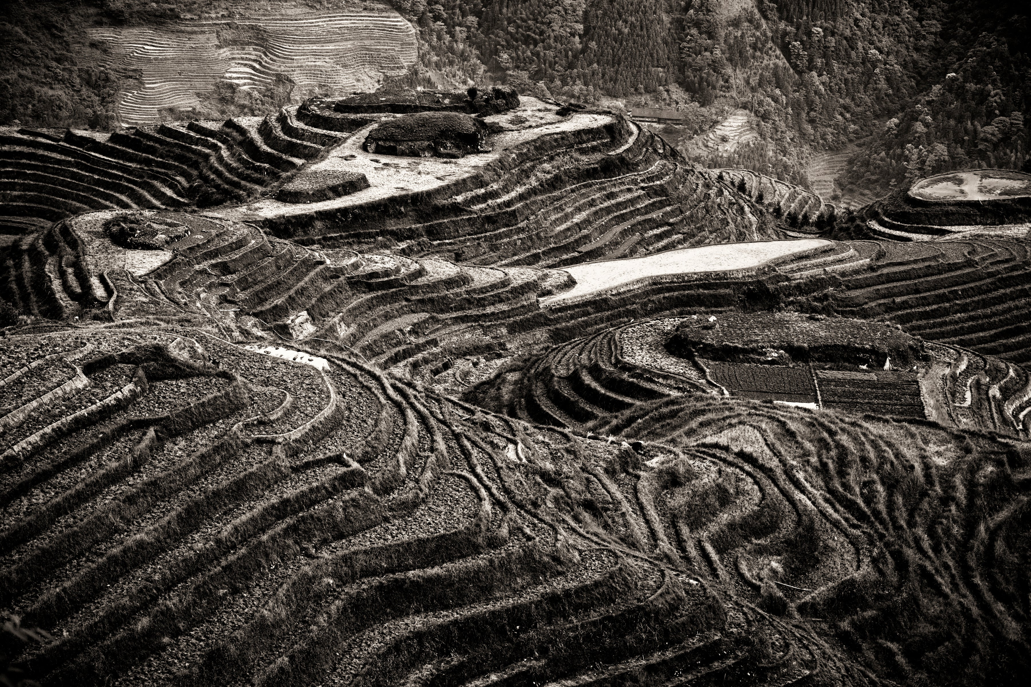 China #12, Black & White Photograph, Limited Edition Photograph, Asia, Travel