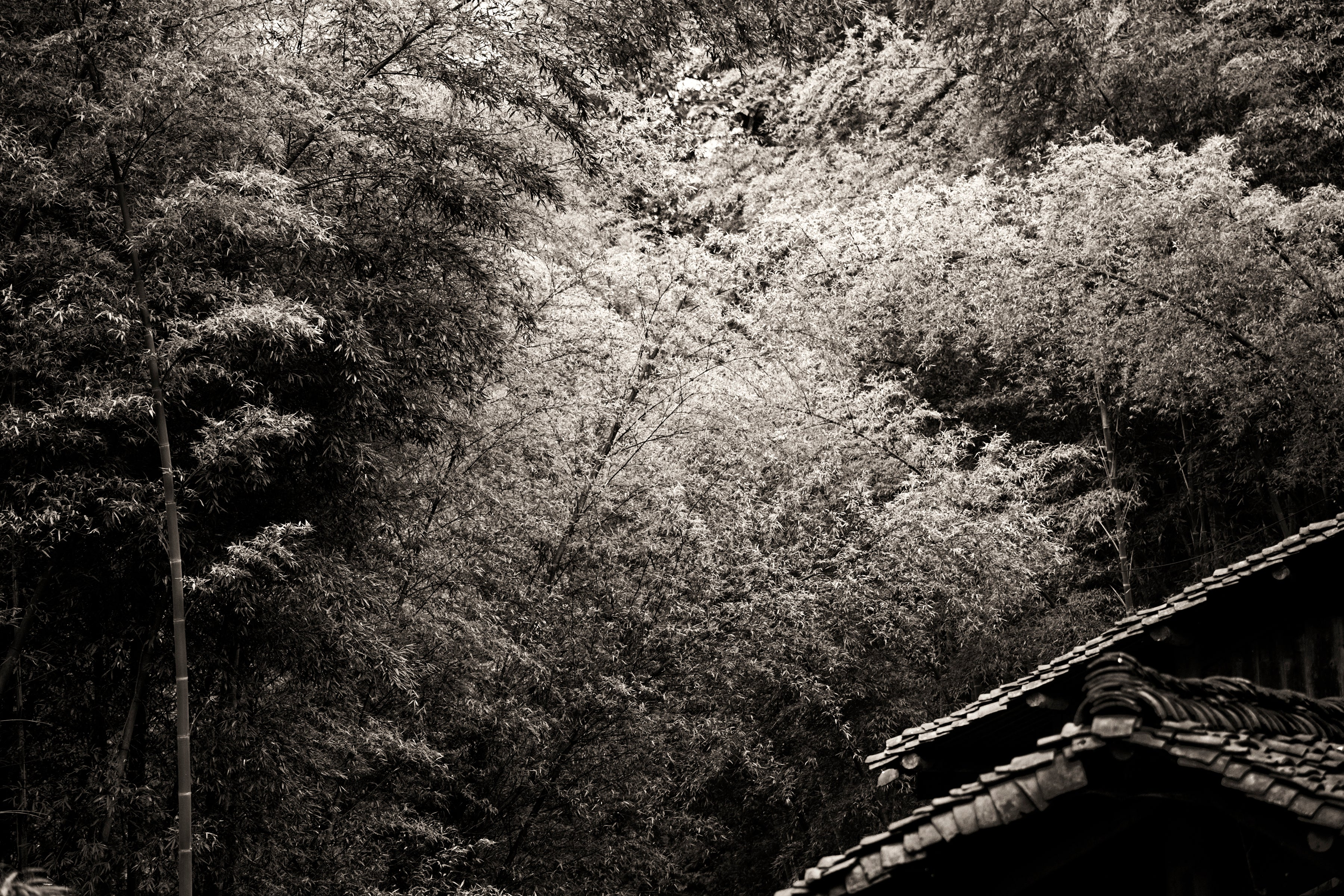 China #58, Black & White Photograph, Limited Edition Photograph, Asia, Travel